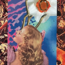 collages-younkins-4